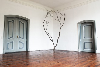 Djamo_The tree of Stelu Nelu and Mirela_Schloss Plueschow studio